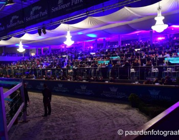95.000 euro voor embryo's in Horse Auction Belgium