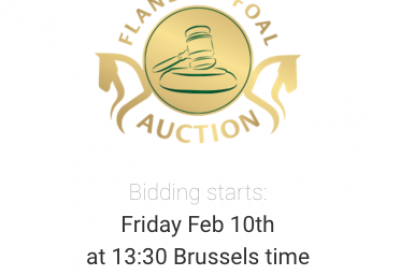 Online bidding? Register here